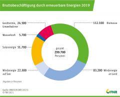 Bruttobeschäftigung durch erneuerbare Energien 2019