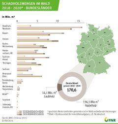 Schadholzmengen im Wald 2018 - 2020* Länder