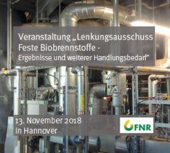 Lenkungsausschuss Feste Biobrennstoffe - Ergebnisse und weiterer Handlungsbedarf