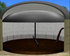 Biogas für Einsteiger