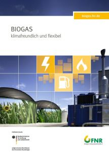 Poster Biogas, Bildseite