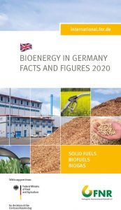 Bioenergy in Germany - Facts and Figures 2020