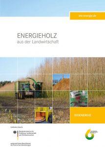Energieholz aus der Landwirtschaft