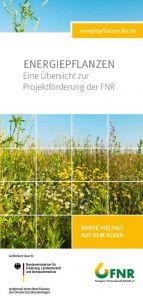 Energiepflanzen - Übersicht zur Projektförderung der FNR