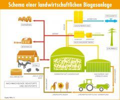 Schema einer landwirtschaftlichen Biogasanlage