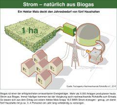 Strom - natürlich aus Biogas