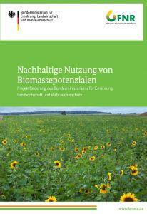 Biomassepotenziale