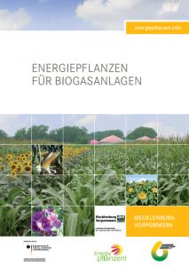 Energiepflanzen für Biogasanlagen - Regionalbroschüre Mecklenburg-Vorpommern