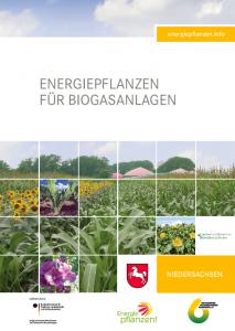 Energiepflanzen für Biogasanlagen - Regionalbroschüre Niedersachsen