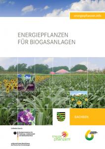 Energiepflanzen für Biogasanlagen - Regionalbroschüre Sachsen