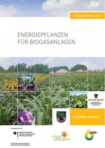 Energiepflanzen für Biogasanlagen - Regionalbroschüre Sachsen-Anhalt