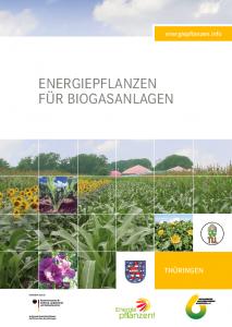Energiepflanzen für Biogasanlagen - Regionalbroschüre Thüringen