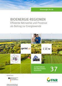 Bioenergie-Regionen - Begleitforschung II