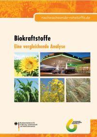 Biokraftstoffe - Eine vergleichende Analyse