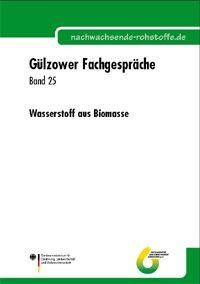 Band 25: Wasserstoff aus Biomasse