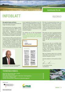 Titel InfoBlatt 2/2013