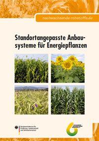 Standortangepasste Anbausysteme für Energiepflanzen