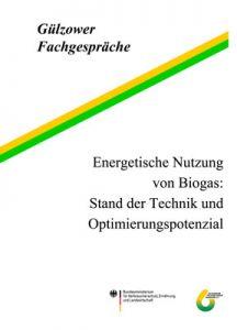 Band 15: Energetische Nutzung von Biogas: Stand der Technik und Optimierungspotenzial