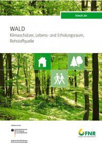Poster Wald, Bildseite